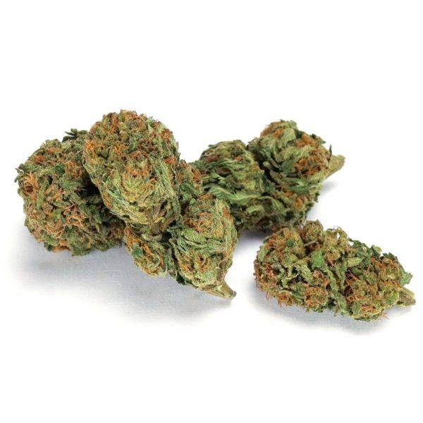 Harlequin Cannabis CBD Flower