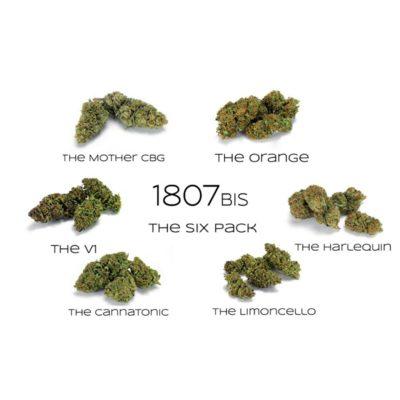 Six Pack Fleurs de CBD